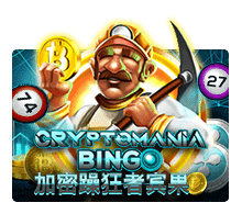 Crypto Mania Bingo