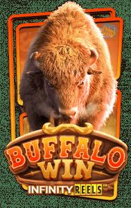 เกม Buffalo Win slot, slotxo, ทดลองเล่นเกมslot, ทางเข้าเกมslot, สมัครสมาชิกเกมslot, สล็อตxo, สล็อตออนไลน์